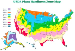 What is my plant hardiness zone? USDA climate plant growing zone map - Know your gardening zone