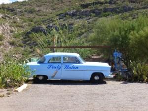 Truly Nolen vintage cars Tucson