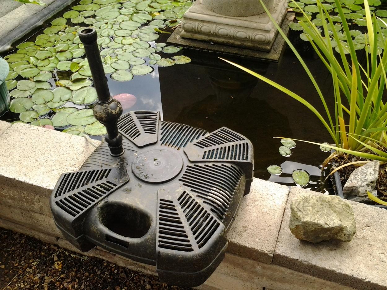 algae control filter