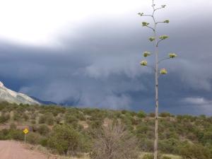 extreme storm cloud