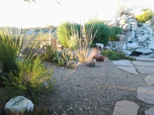 drought resistant tolerant bushes in yard design