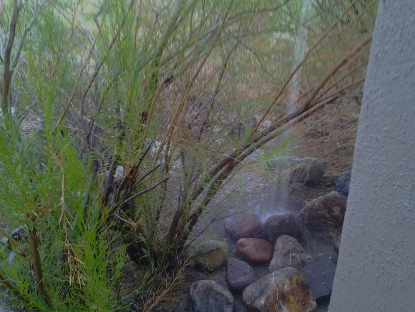 Microburst Storm in Arizona