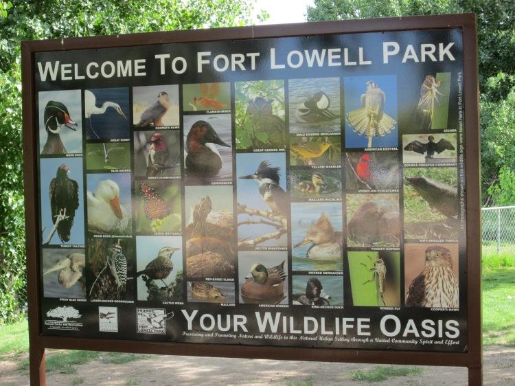 wildlife oasis park in Tucson Arizona desert