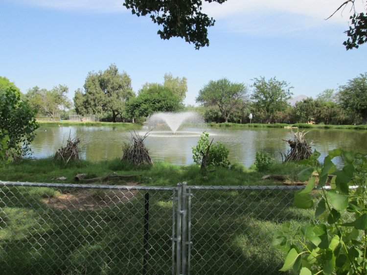 Tucson Arizona wildlife park with water