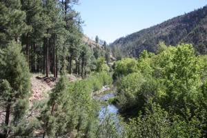 Chevelon Canyon Creek