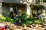 desert lush garden
