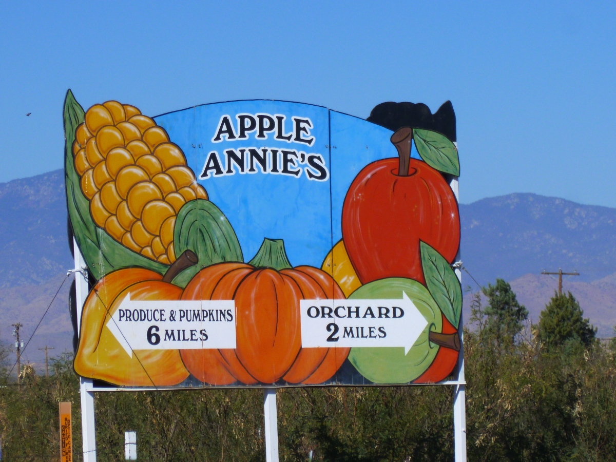 Apple Annie's Orchard in Willcox – activities in Arizona