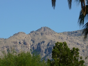 Coronado National Forest in Tucson