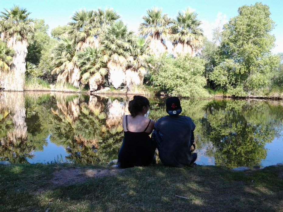 Tucson park for wedding rental and portraits